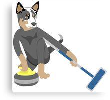 Australian Cattle Dog Olympic Curling Canvas Print