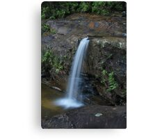 First Drop Wentworth Falls...14-11-10. Canvas Print