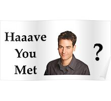 Haaave you met Ted? Poster