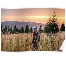 Mountain meadow at the sunset Poster