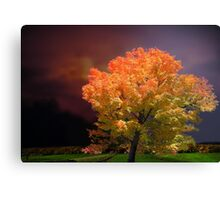 Red October Canvas Print