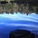 Reflections on a blue sky by CMCetra