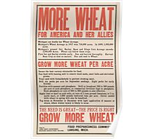 United States Department of Agriculture Poster 0249 More Wheat for America and Her allies Poster
