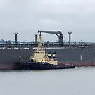 Nectar - Crude Oil Tanker by Cecily McCarthy