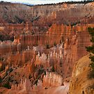 Bryce Canyon Sunrise by Marc McDonald