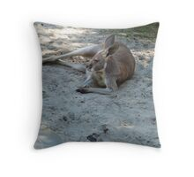 Having A Lazy Afternoon Throw Pillow