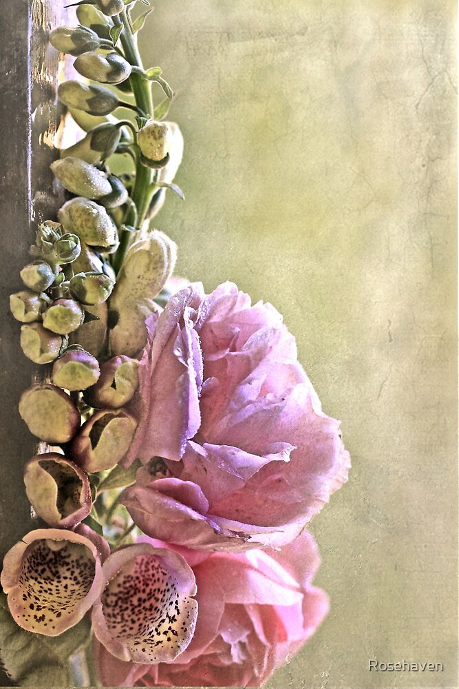 """""""Foxgloves & Roses ..."""" by Rosehaven"""