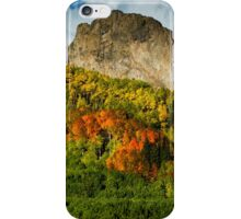 The Tapestry 2 iPhone Case/Skin