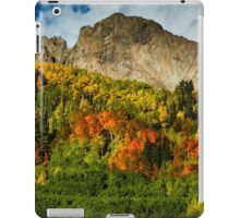 The Tapestry 2 iPad Case/Skin