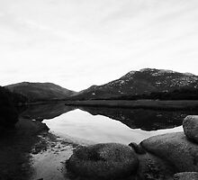 Tidal River Reflections by Fiona Kersey