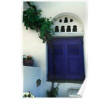 Grape Vine and Blue Shutters Poster