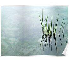 """reeds""  Poster"