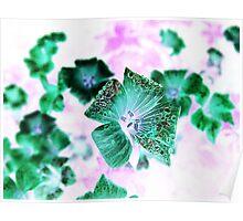 Photoshopped Flower 2 Poster