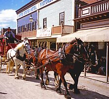 Cobb & Co at Sovereign Hill by TonyCrehan