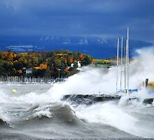 Autumn Leaves, Wind and Waves by PicsandCo