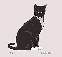 Socks the Cat Photographic Print