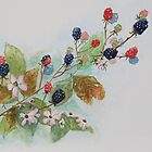 Blackberry Composition by Geraldine M Leahy