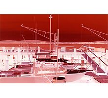 Bodega Bay Red Photographic Print