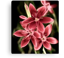 Shining Flowers Canvas Print