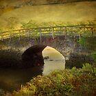 Terras Bridge by Catherine Hamilton-Veal  ©