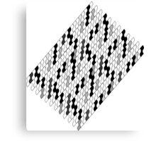 Grey scales Canvas Print