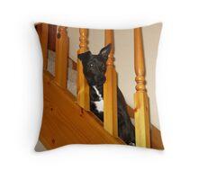 Tarn On Stairs Throw Pillow