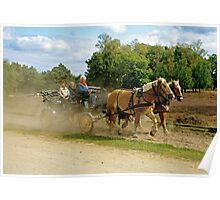 Horse carriage on the Lüneburg Heath, Germany Poster