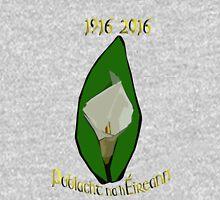 Poblacht na hEireann Republic of Ireland  Hoodie