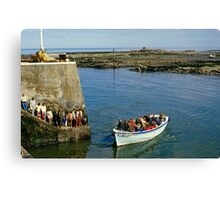 Farne Island Boat trips, Northumberland, UK 1980s Canvas Print