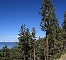Mountainside near Lake Tahoe by Frank Romeo