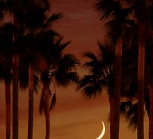 Crescent Moon by Naturespeaks