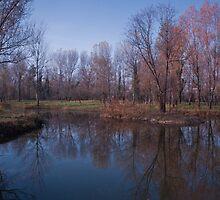 Fall Reflections,Sassuolo,Italy. by Davide Ferrari