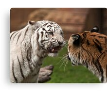 Go Ahead! Call Me 'Toothless' One More Freaking Time. Canvas Print