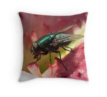 Fly's feast Throw Pillow