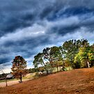Country Backyard by AaronJ