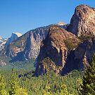 Tunnel View, Yosemite by Anne McKinnell