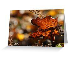 Maple Leaf Fall's Fall Greeting Card
