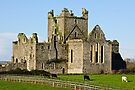 Dunbrody Abbey, County Wexford, Ireland by Andrew Jones