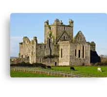 Dunbrody Abbey, County Wexford, Ireland Canvas Print