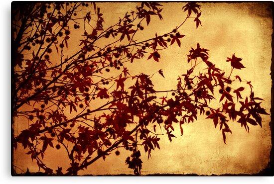 as autumn falls by Ingz