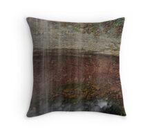 Indian Falls, Detail Throw Pillow