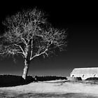 Ash Tree & Barn by NSQPhotography