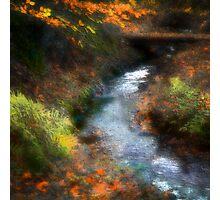 Waterworks Valley, Jersey Photographic Print
