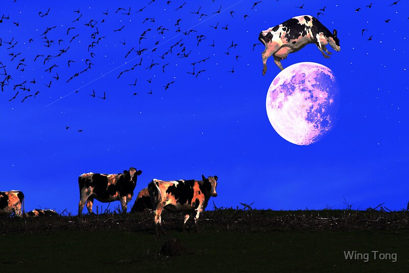 """the cow jumped over the moon 2006-9-19 over the moon源于一首欢快的儿歌 :""""hey, diddle, diddle/the cat and the fiddle/the cow jumped over the moon/the little dog."""