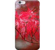Japanese Maple iPhone Case/Skin