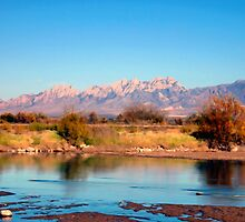 River View at Mesilla by Kurt  Van Wagner