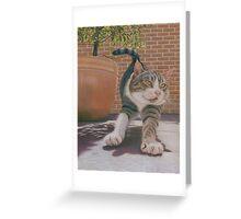 Str-e-e-e-tch Greeting Card