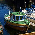 Little Boat by Lee d'Entremont