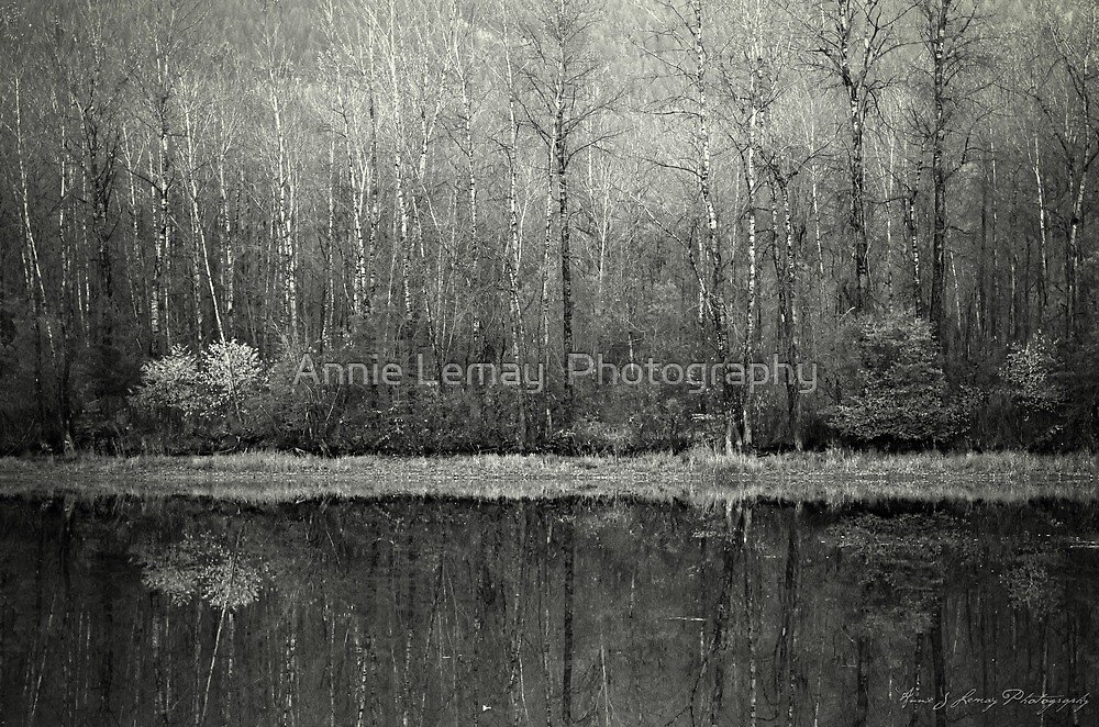 Promise of a New Day by Annie Lemay  Photography
