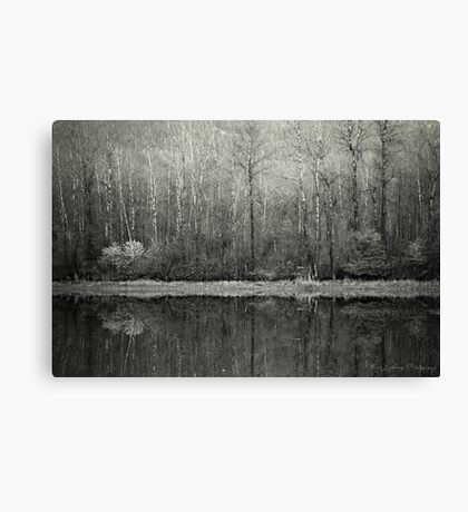 Promise of a New Day Canvas Print